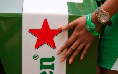 Fritz – Heineken Champions Planet: Case Study Video